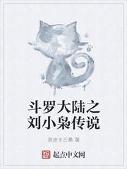 斗罗大陆之刘小枭传说